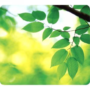 Earth Series™ egéralátét, levelek